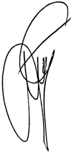 GT podpis